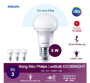 Bóng Đèn Philips LED Ecobright 5W 6500K E27 A60